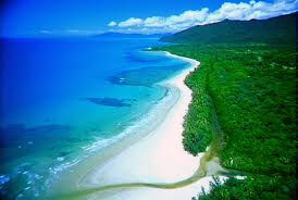 Optional Day Tour (Not Included) - Cape Tribulation & Daintree Rainforest
