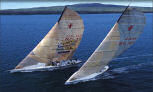 Optional Day Tour (Not Included) - Americas Cup Sailing Expedition - 1/2 Day