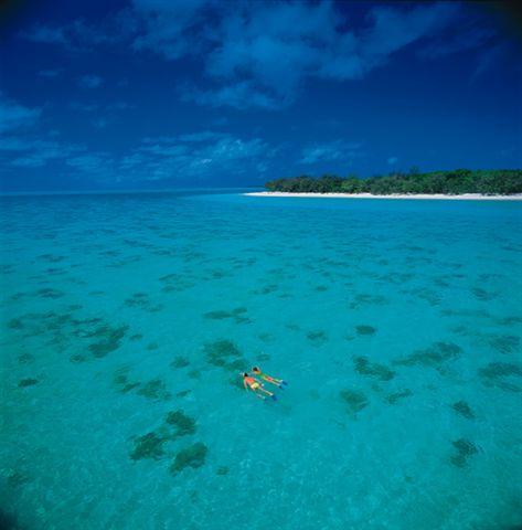 Heron Island Snorkelling