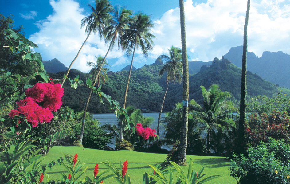 Fiji Resorts - Enjoy lush green landscapes and spectacular views