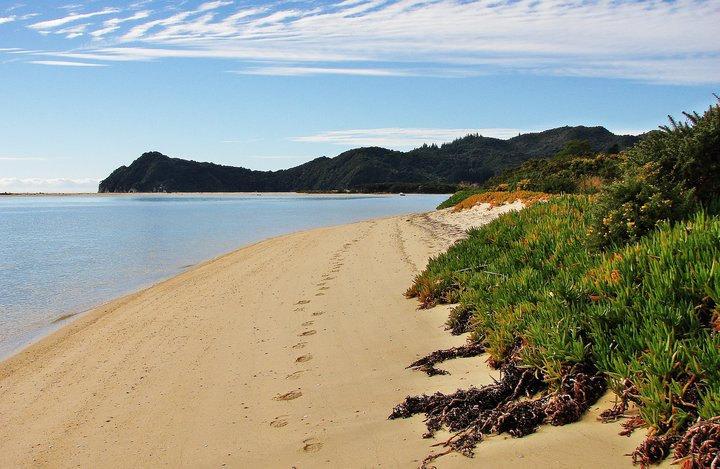 Tour the Abel Tasman in New Zealand on your vacation