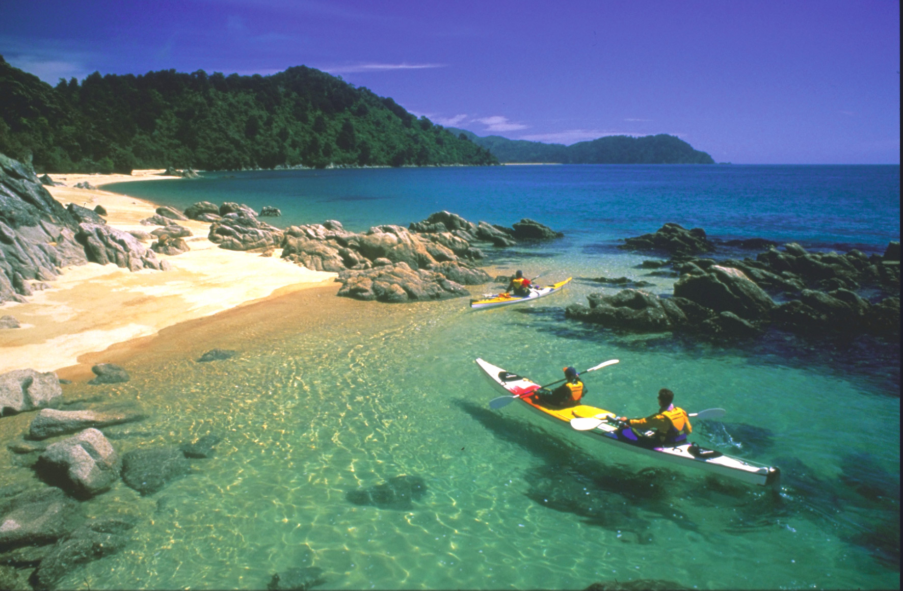 Kayaking Adventures in Abel Tasman, New Zealand