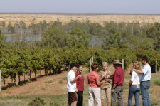 Barossa Wine Tour, Adelaide, Australia