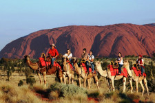 Camel to Sunset, Ayers Rock, Australia