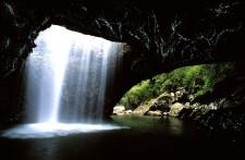 Glow Worm Cave, Gold Coast, Australia