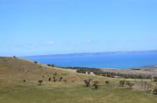 Kangaroo Island to Adelaide, Self Drive
