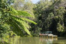 Australia, Queensland, Cairns, Day Tours, Wildlife