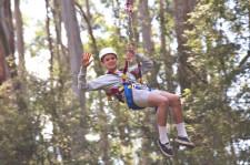 Otway Fly Treetop, Victoria