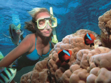 Great Barrier Reef Cruise, Port Douglas, Australia