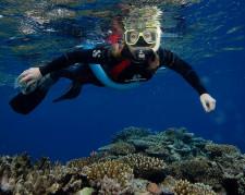 Great Barrier Reef Snorkeling, Cairns, Australia