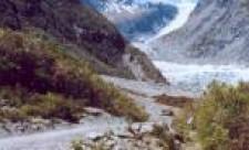 Fox Trail and Face Walk. Fox Glacier, New Zealand