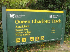 Queen Charlotte Track, New Zealand
