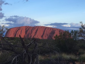 Australia Travel Agency Travel Company Review - Photo of Ayers Rock at Sunset