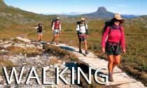 Walking_Tours_Australi