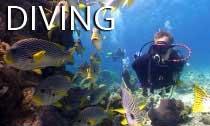 scuba_diving_australia