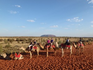 Camel Ride in the Outback