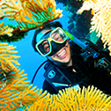 11 Best Underwater Experiences in Australia