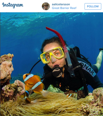 Find Nemo on the Great Barrier Reef. Travel to Australia.
