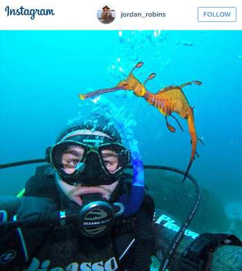 Travel to Australia Dive with Leafy Dragon
