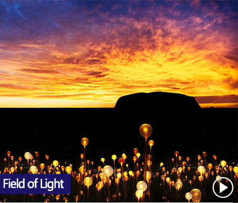 Field of Light art installation by Bruce Munro, is coming to Australia for the first time. Ayers Rock Resort is commited to arts and culture and this year, it's hosting the biggest Field of Light installation to date in the place that inspired it - Uluru.
