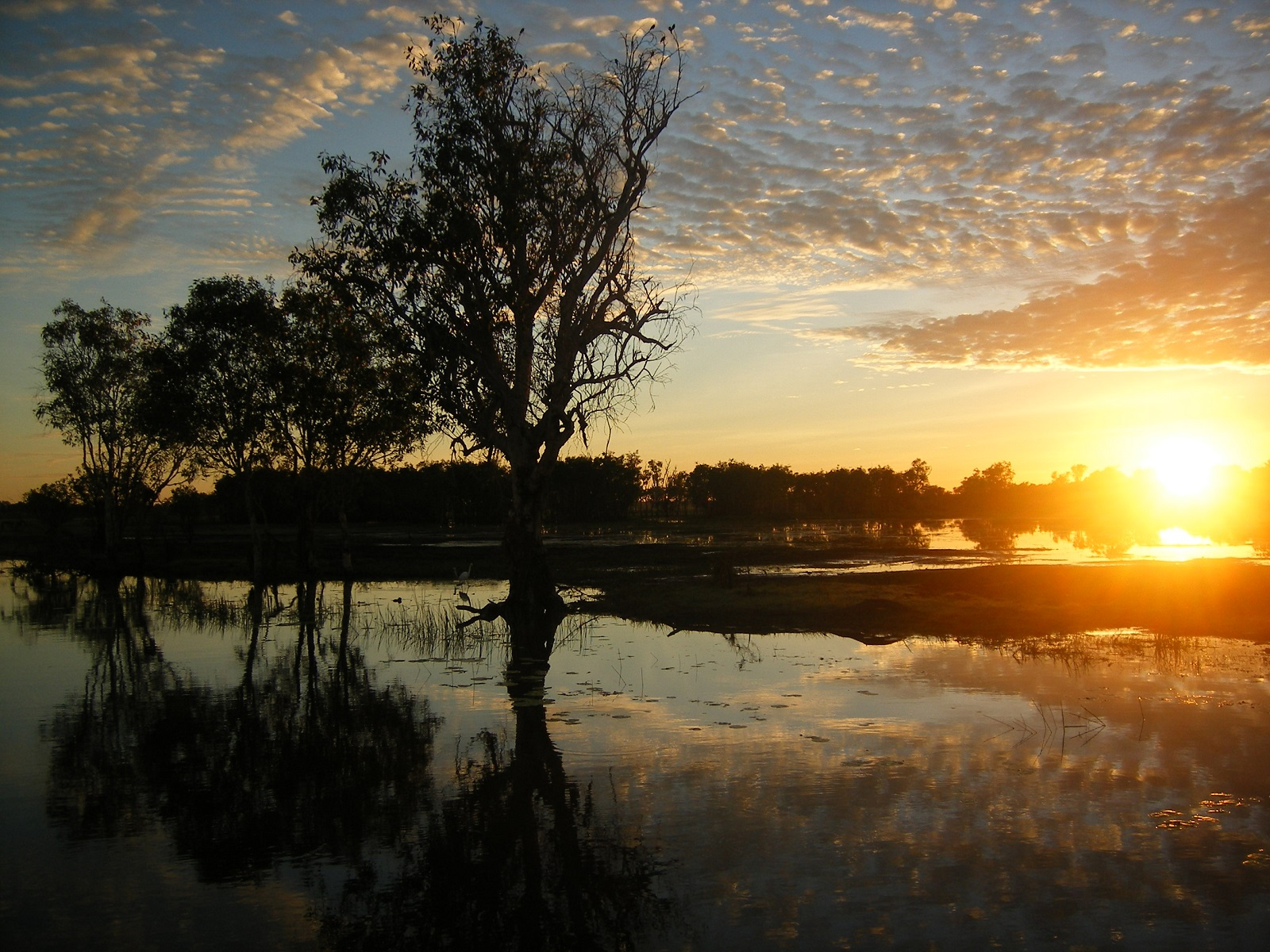 Yellow Water Billabong Sunset