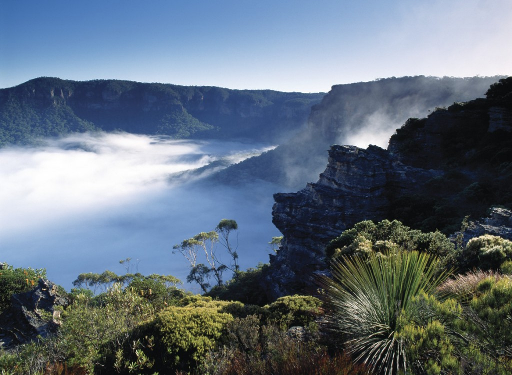 Jamison Valley Things to Do in the Blue Mountains Sydney New South Wales Australia