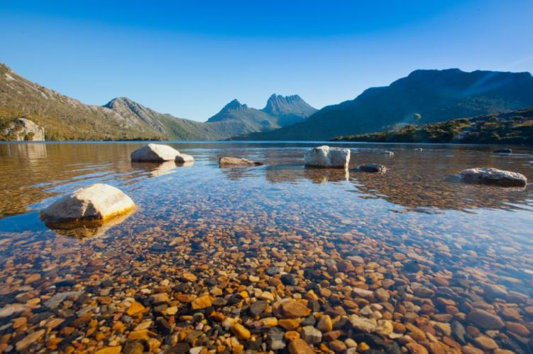 Lake Dove and Cradle Mountain