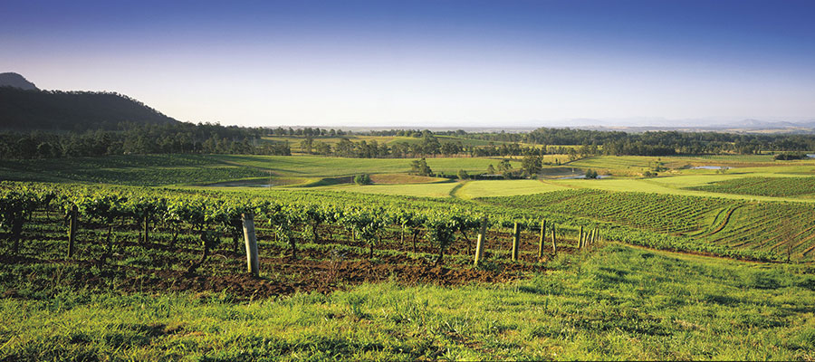 Hunter valley gardens discount coupons
