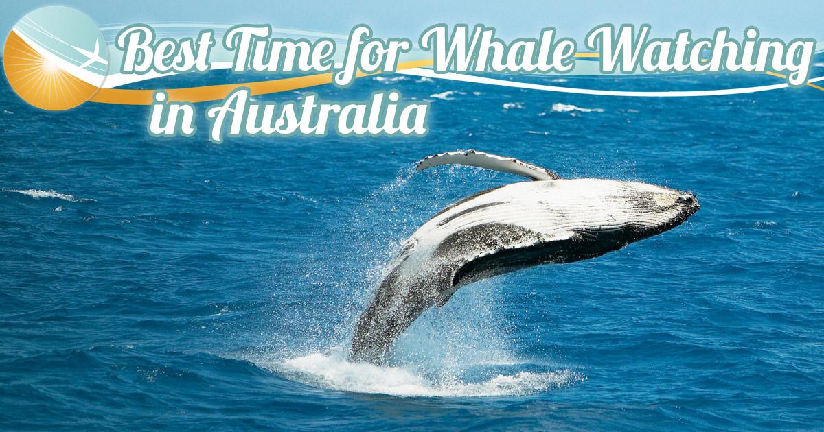Best by date in Australia