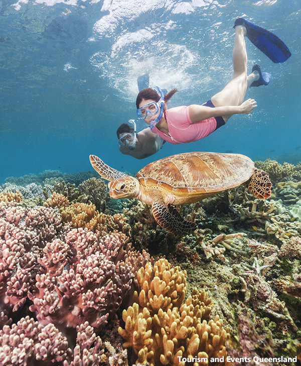 Snorkeling the Great Barrier Reef at the Whitsundays