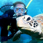 Best Underwater Experiences in Australia