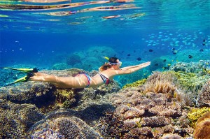 Girl snorkeling the Great Barrier Reef ReefQuest