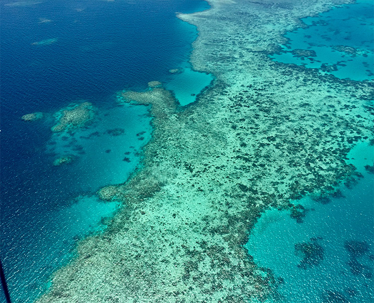 Great Barrier Reef from above photo credit Sheri Hardin