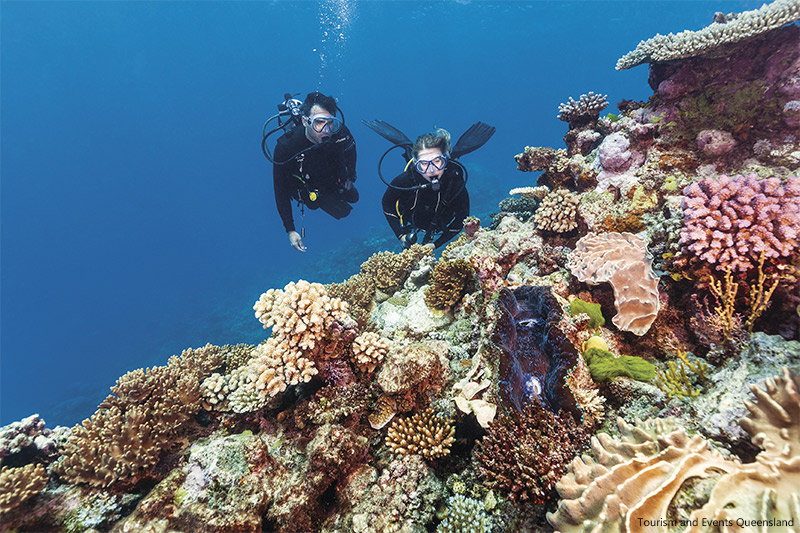 Scuba diving at Agincourt Reef Tropical North Queensland credit Tourism and Events Queensland