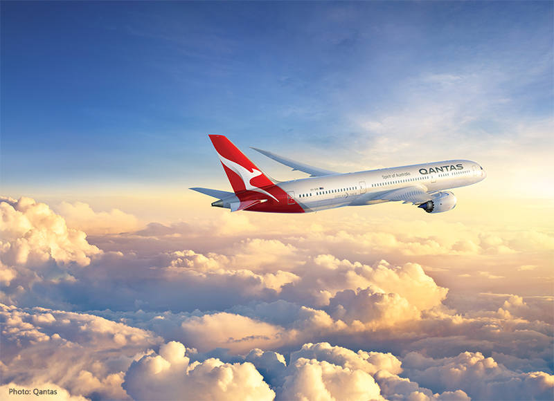 Qantas Dreamliner Monkey