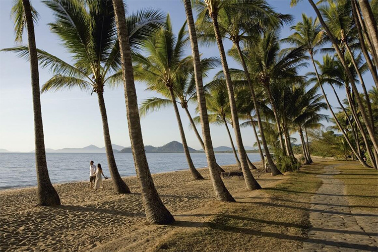 Palm Cove credit Tropical North Queensland