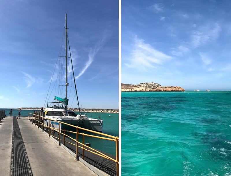 Sailing Ningaloo Reef