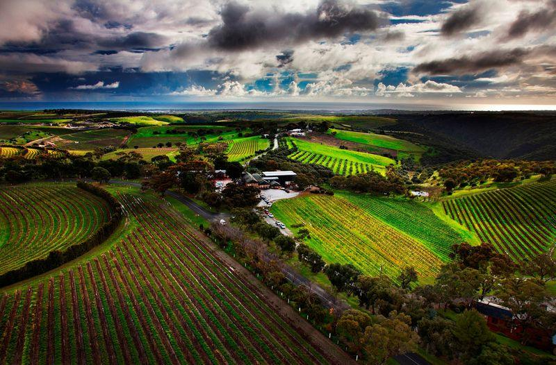 Aerial view of Chapel Hill Estate, McLaren Vale credit Chapel Hill
